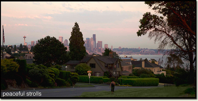 View of Seattle from the Magnolia Bluffs